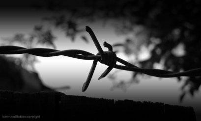 barbed_wire_concentration_camp_by_quelfamosoporco